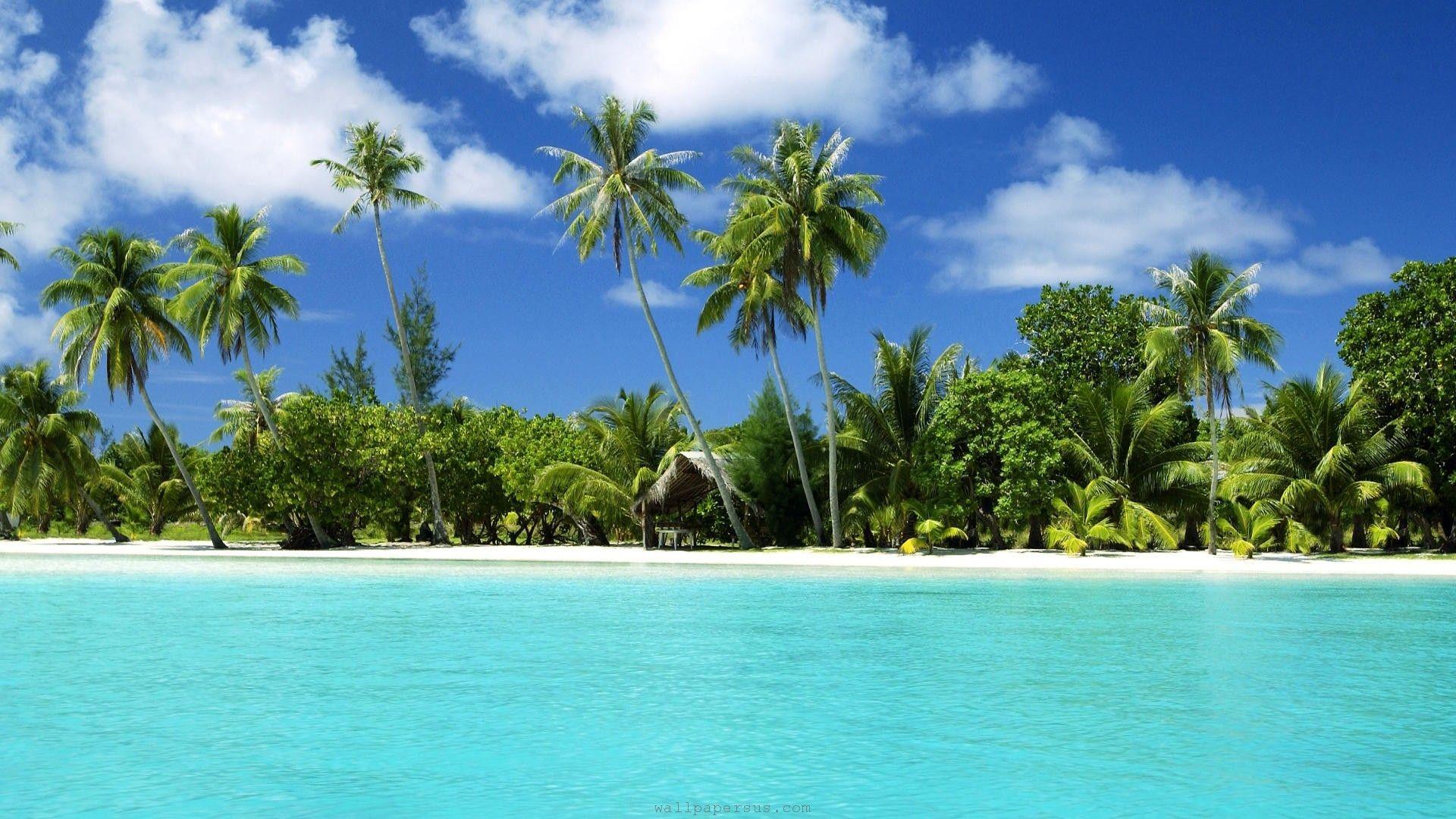 Tropical Beach Landscape Pictures