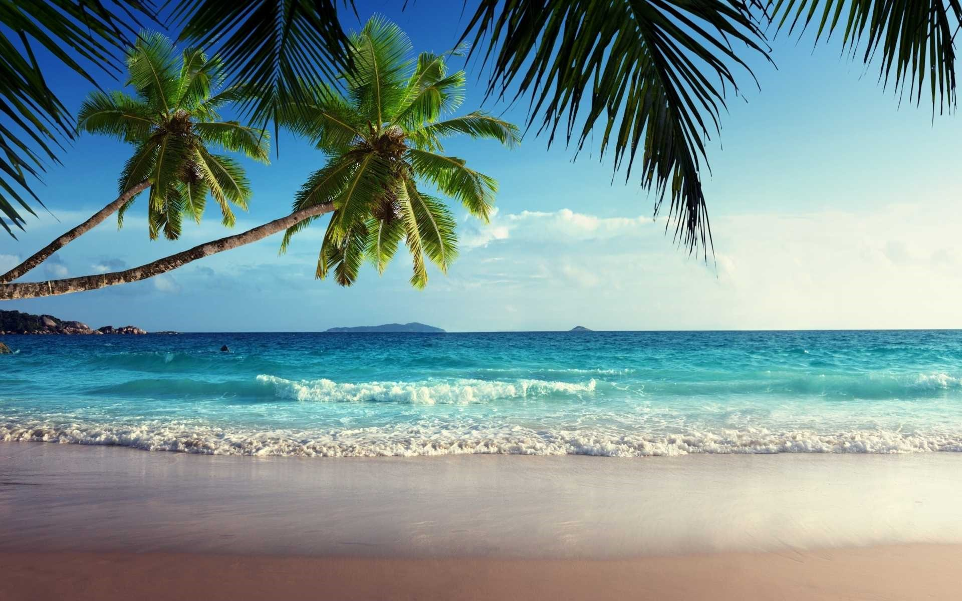 Tropical Beach Landscape Wallpaper
