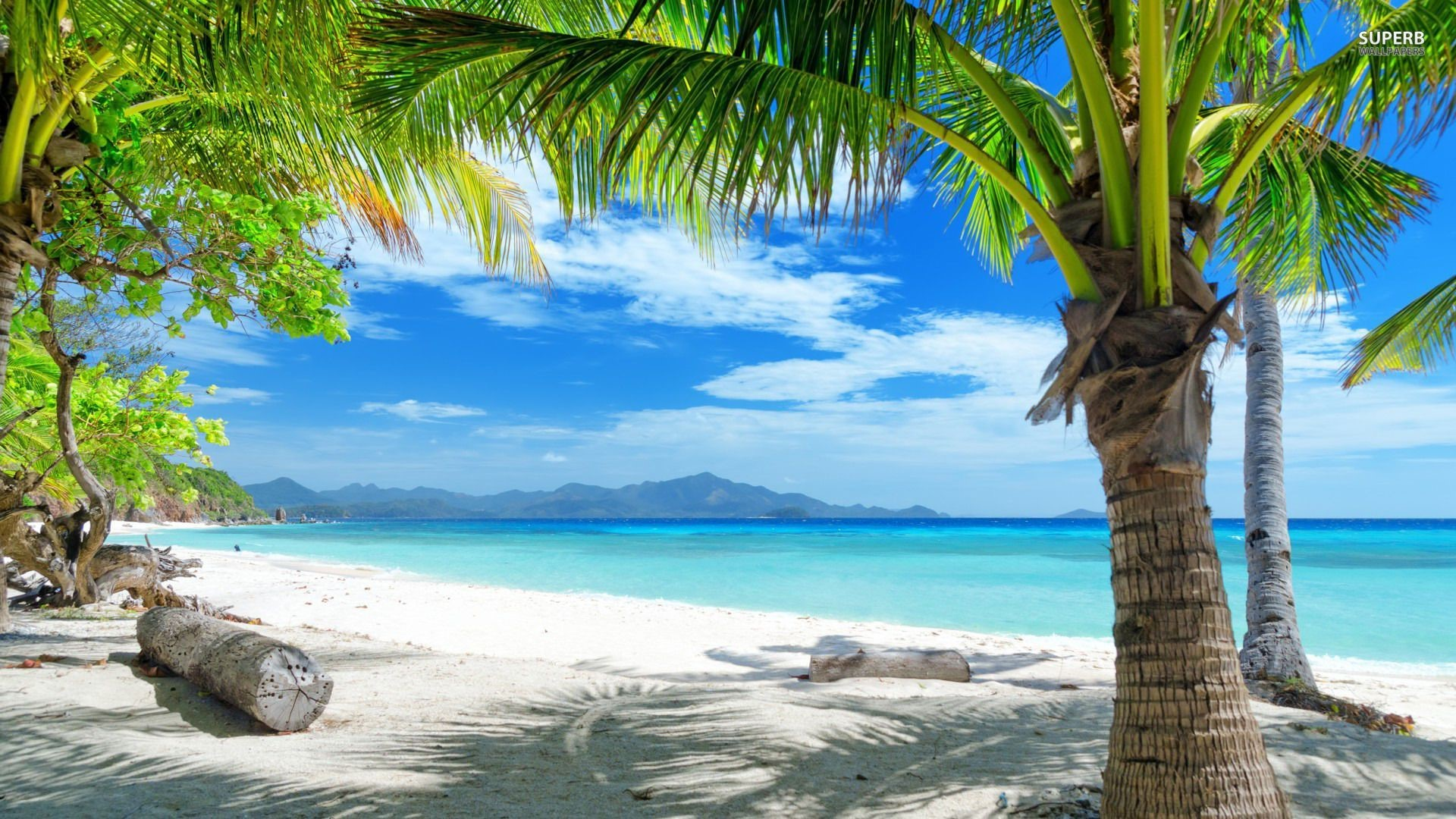Tropical Beach Landscape Windows Background