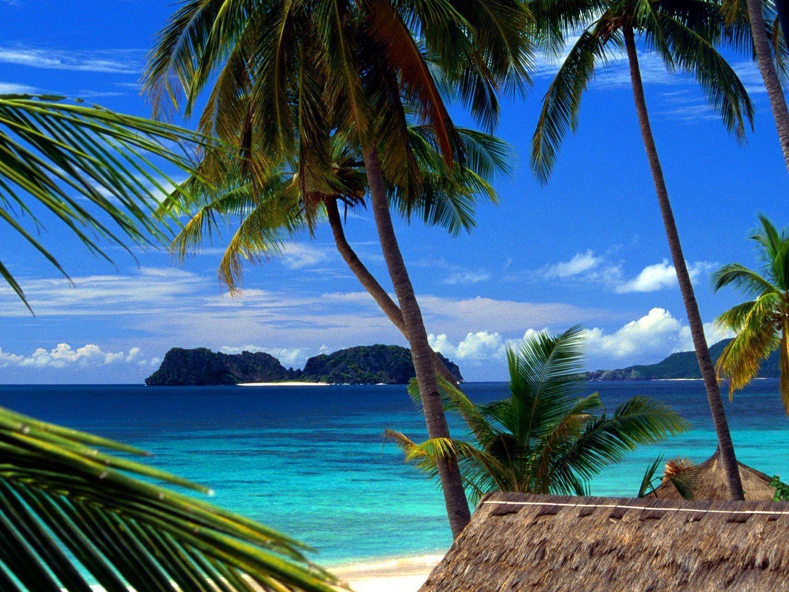 Tropical Beach Landscape images