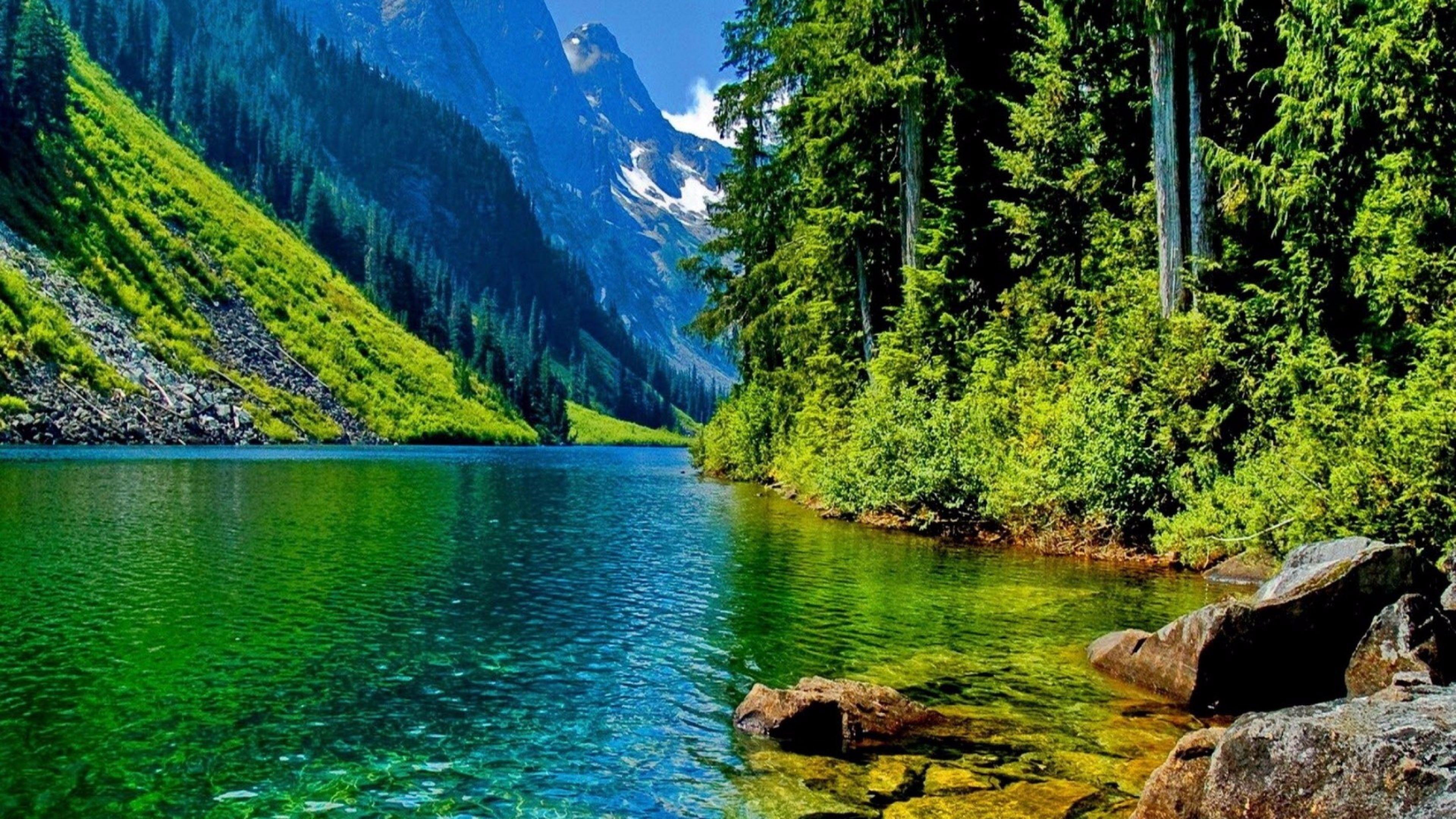 4K Nature Pics