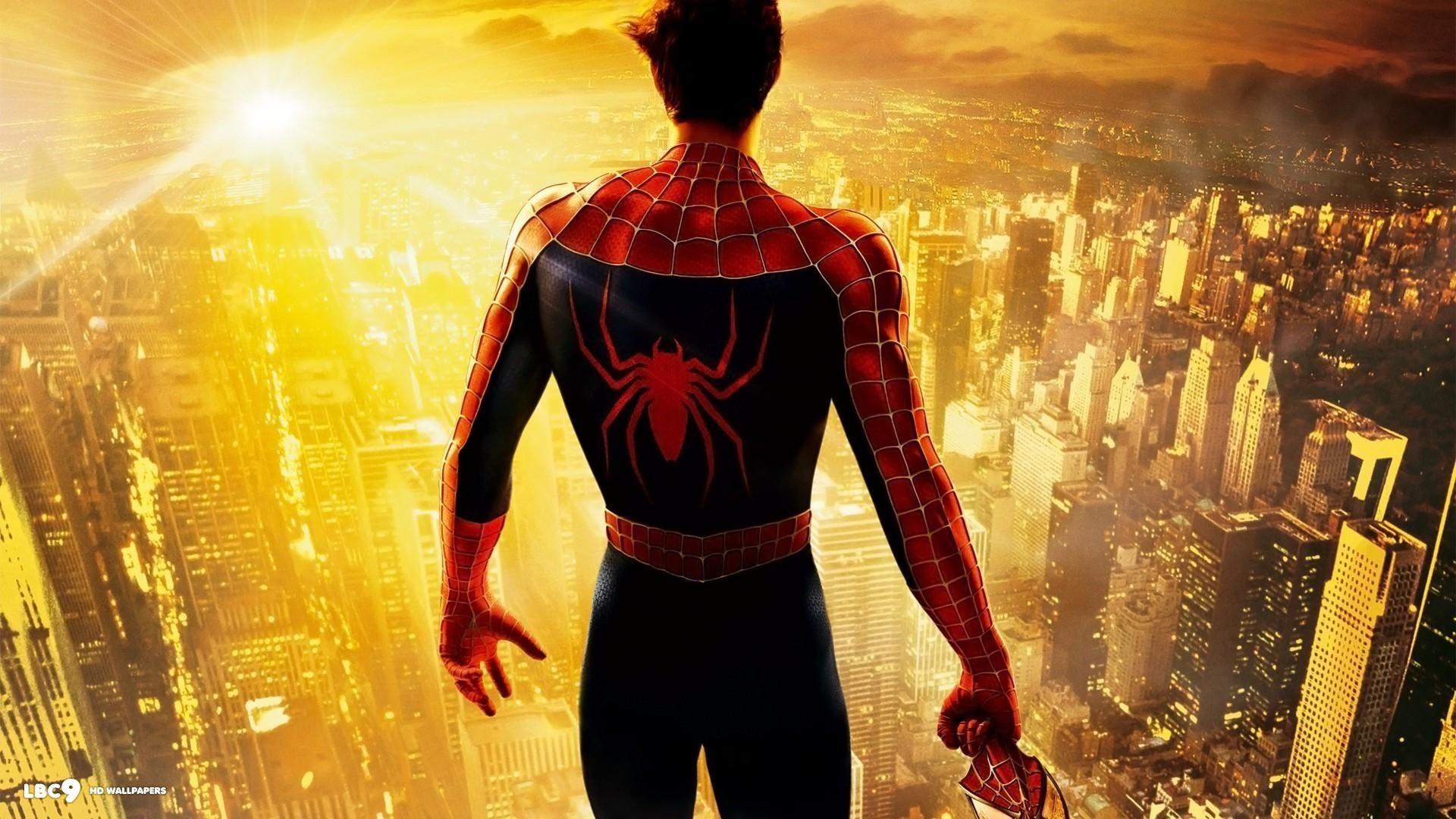 Spider Man Wall Background