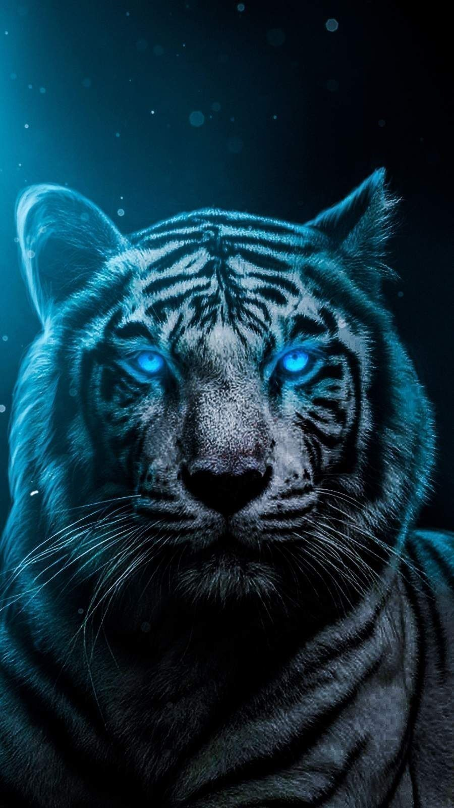 Blue Eyes Tiger Wallpaper Wallpaper Download High Resolution 4k Wallpaper