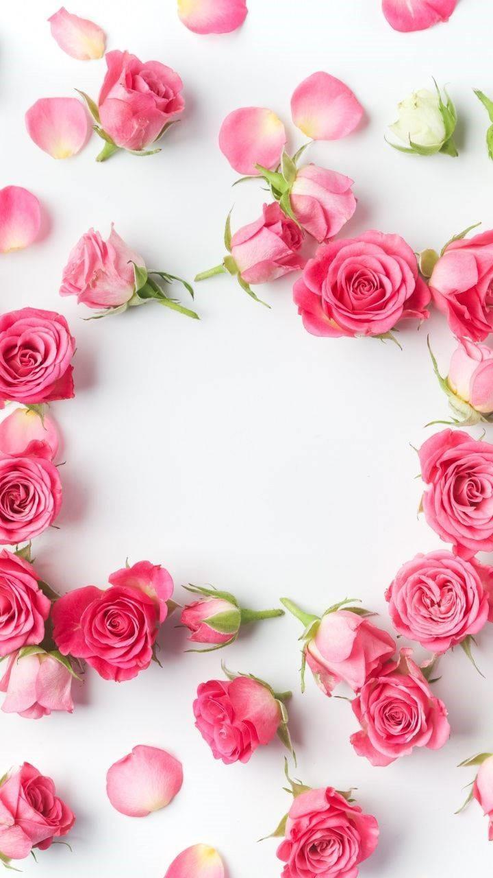 Beautiful Flowers WallpaperMobile