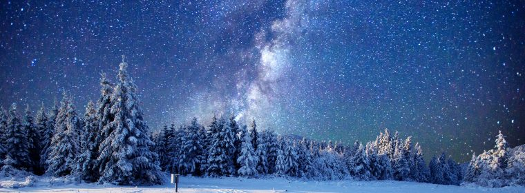 Wallpaper forest, snow, winter, sky, stars, night, 5k, Nature